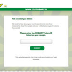 SUBWAY India Customer Survey